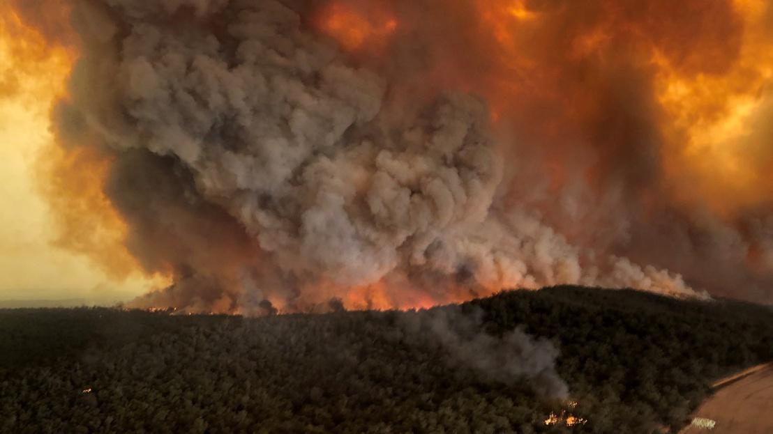 Ausztrália erdőtűz